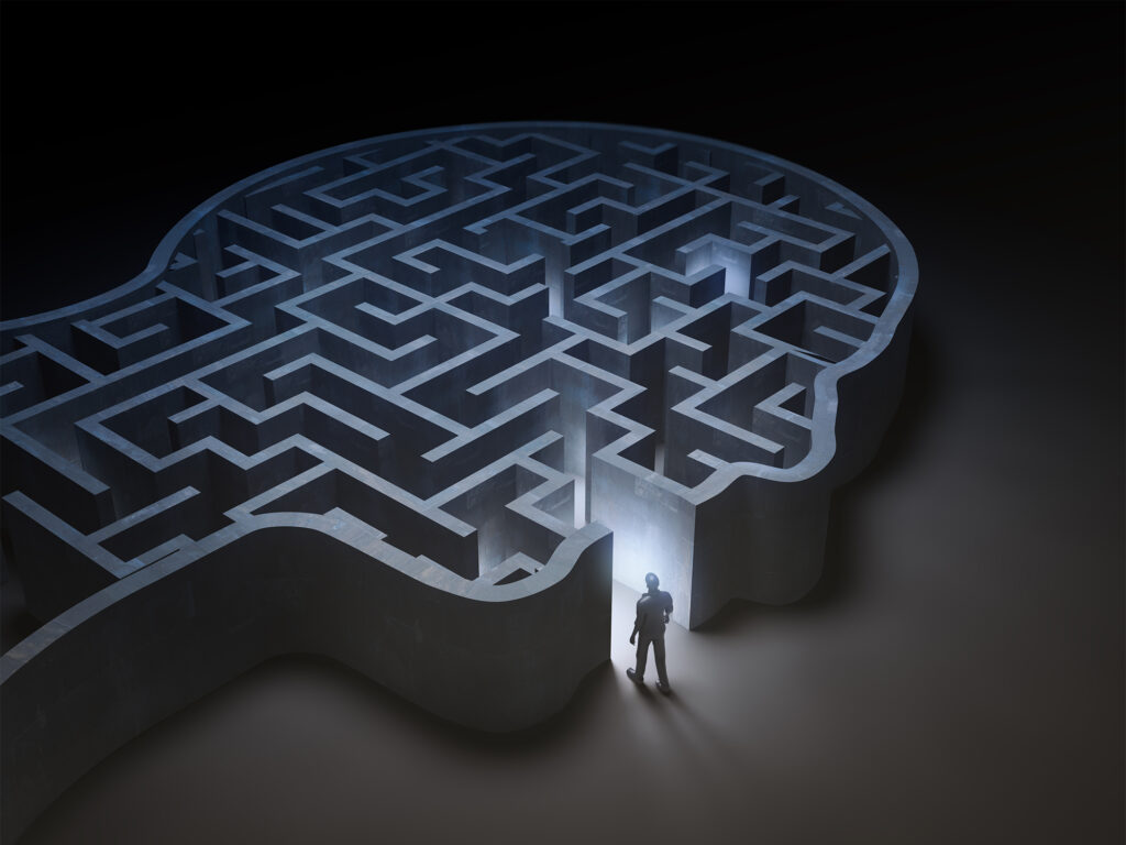 a person stands before a human head shaped maze
